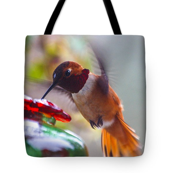 Rufus Hummingbird At The Feeder Tote Bag by Chuck Flewelling
