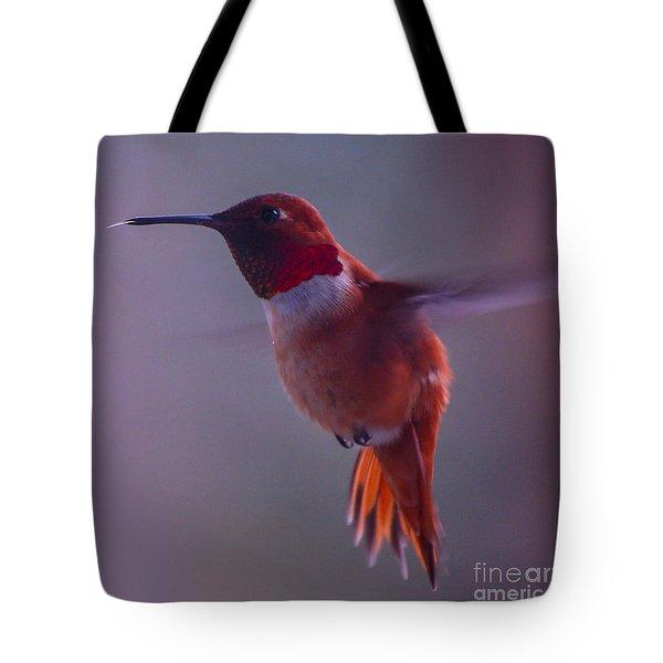 Rufus Hummingbird Tote Bag by Chuck Flewelling