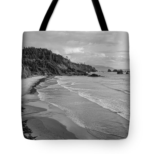 Rugged Beauty Tote Bag by Don Schwartz