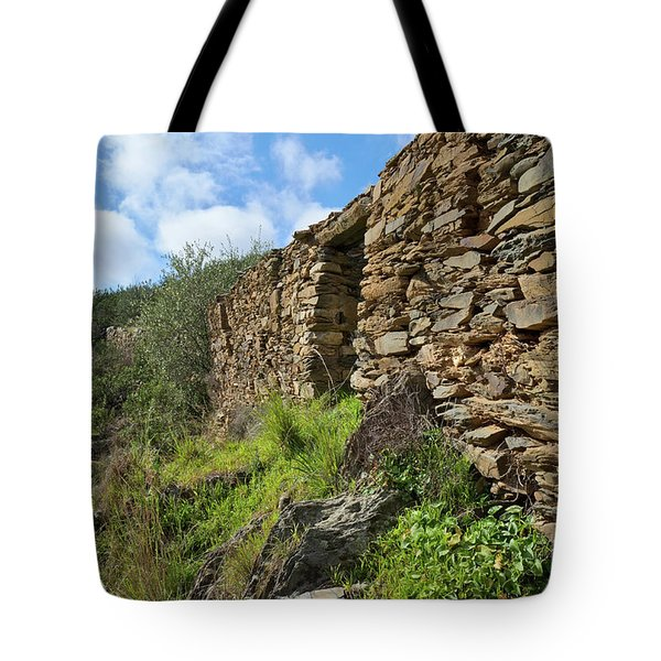 Ruins Of A Schist Cottage In Alentejo Tote Bag by Angelo DeVal