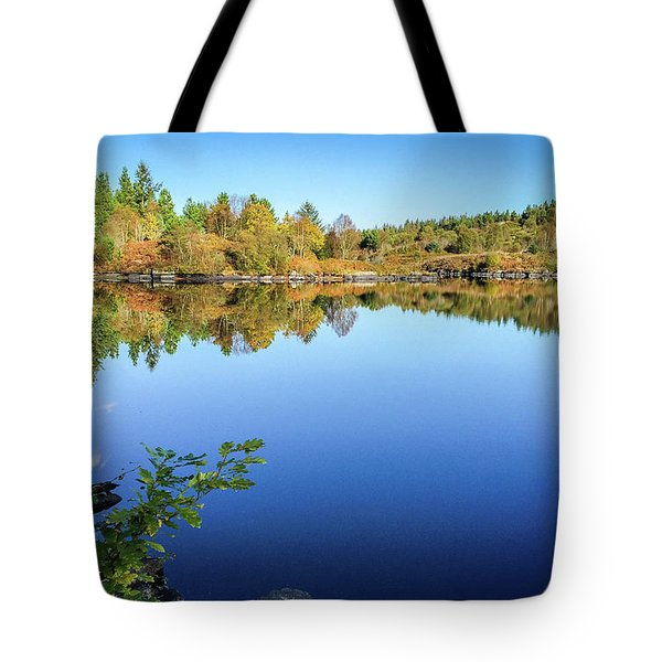 Ruminating The Fall Tote Bag