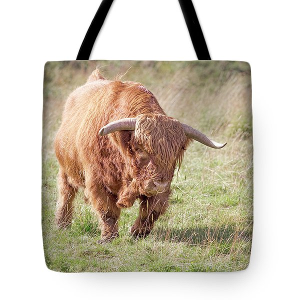 Tote Bag featuring the photograph Run by Roy McPeak