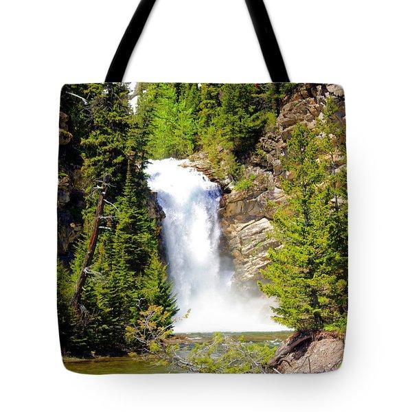 Running Eagle Falls Tote Bag