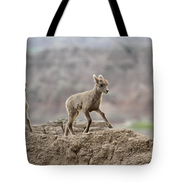 Running Wind Through The Badlands Tote Bag