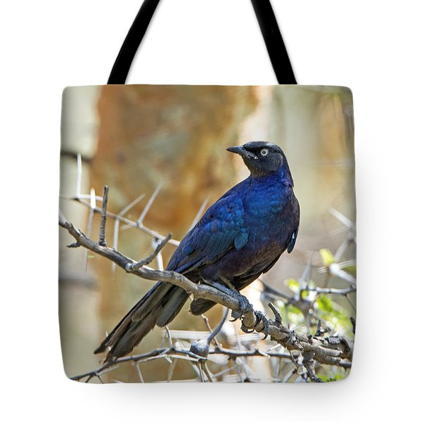 Tote Bag featuring the photograph Ruppels Glossy Starling by Pravine Chester