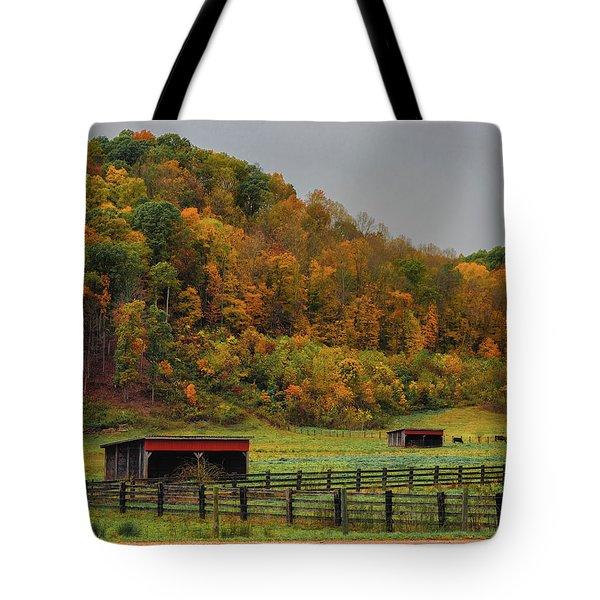 Rural Beauty In Ohio  Tote Bag