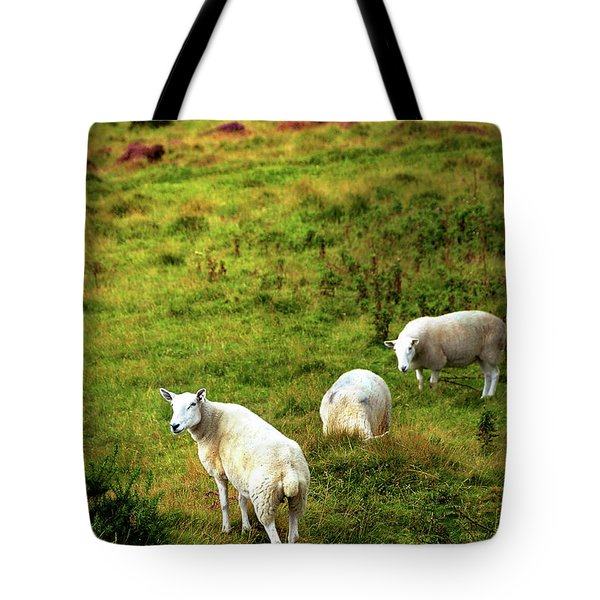 Tote Bag featuring the photograph Rural Idyll. Wicklow. Ireland by Jenny Rainbow