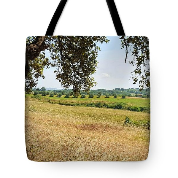 Tote Bag featuring the photograph Rural Tuscany by Valentino Visentini