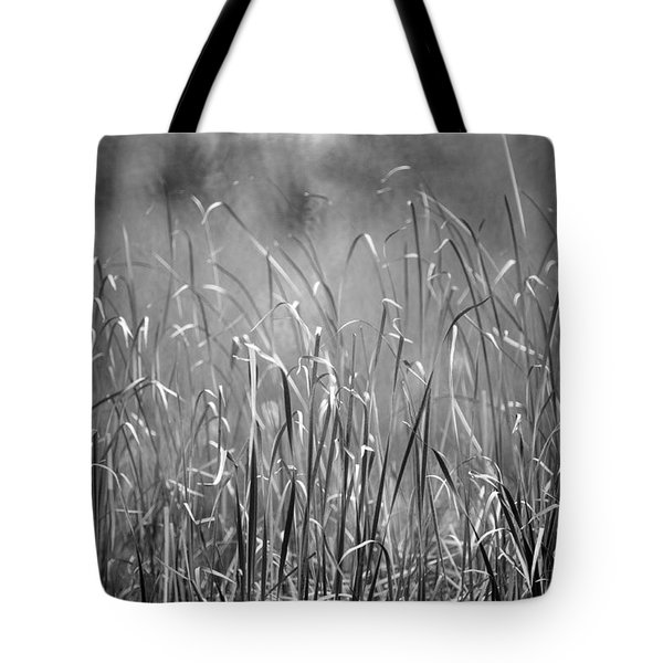 Rushes Tote Bag