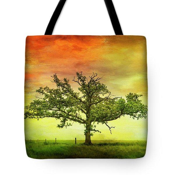 Rushford Tree On 43 Tote Bag