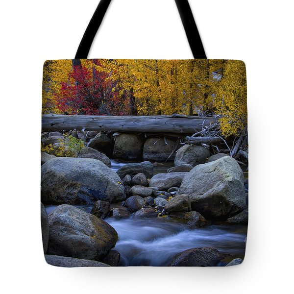 Rushing Into Autumn Tote Bag by Mitch Shindelbower