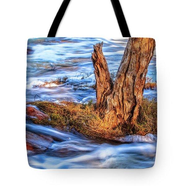 Tote Bag featuring the photograph Rustic Island, Noble Falls by Dave Catley