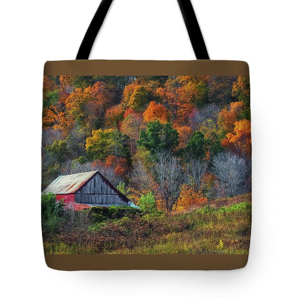 Rustic Out Building In Southern Ohio  Tote Bag