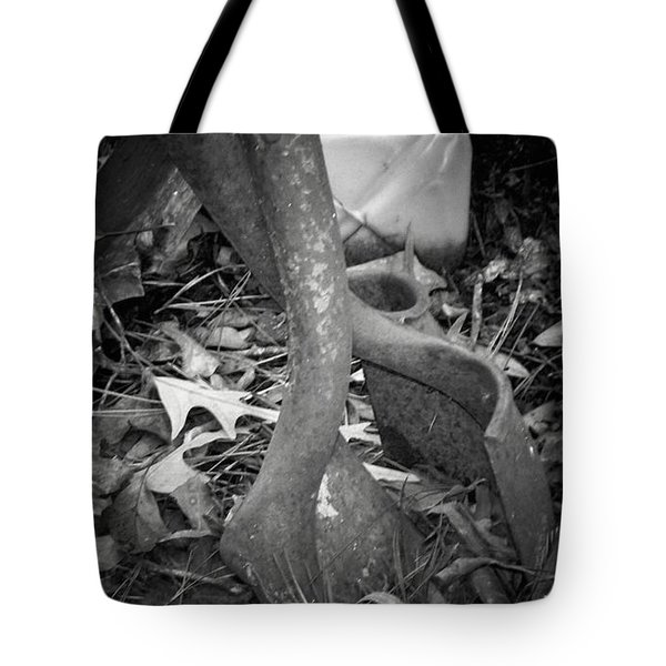 Tote Bag featuring the photograph Rusty Embrace by Betty Northcutt