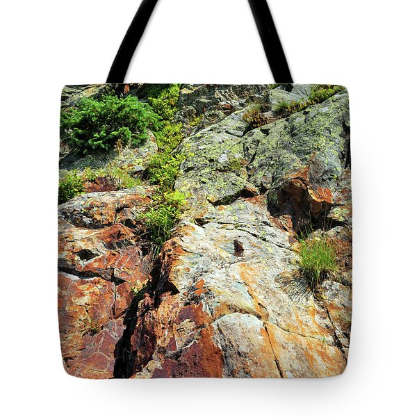 Rusty Rock Face Tote Bag
