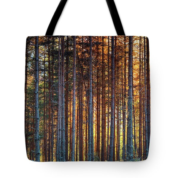 Rusy Forest Tote Bag by Evgeni Dinev