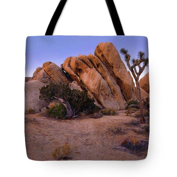 Ryan Mountain Rock Formation Pano View Tote Bag