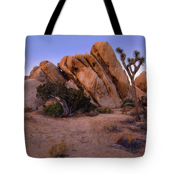 Ryan Mountain Rock Formation Pano View Tote Bag
