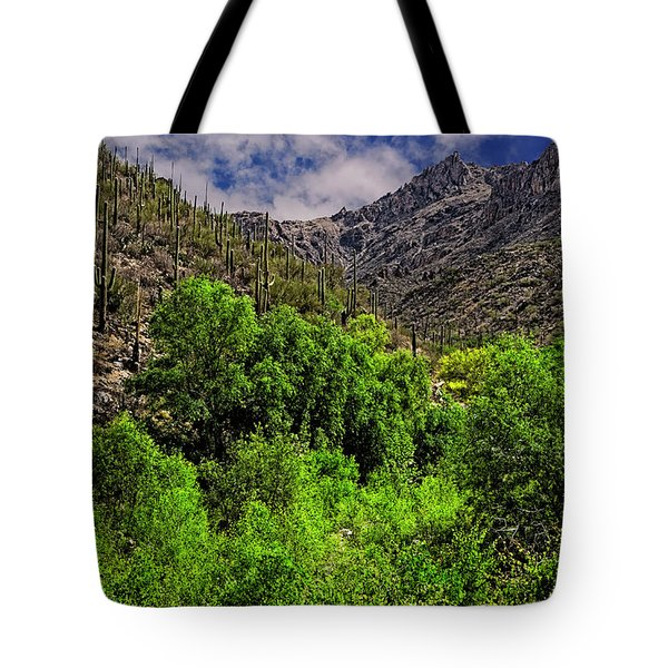 Tote Bag featuring the photograph Sabino Canyon H33 by Mark Myhaver