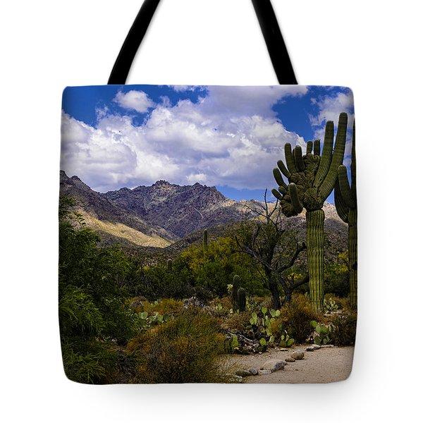 Sabino Canyon No4 Tote Bag