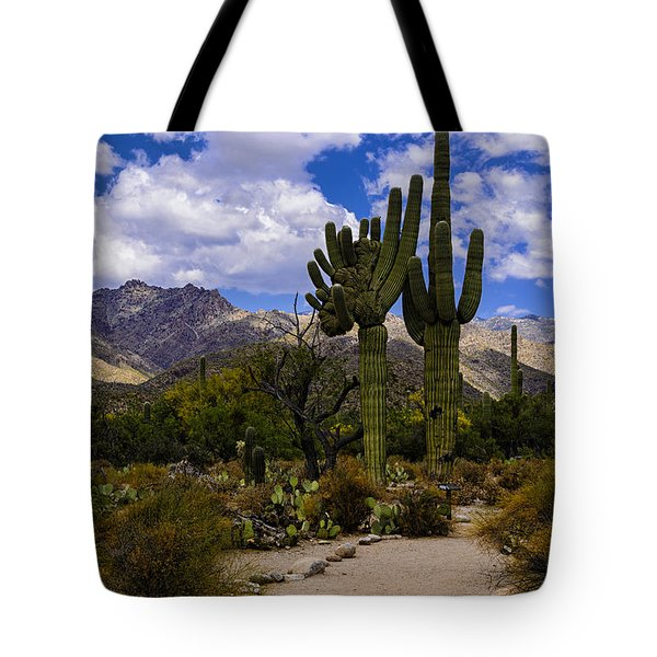 Sabino Canyon No4 Tote Bag