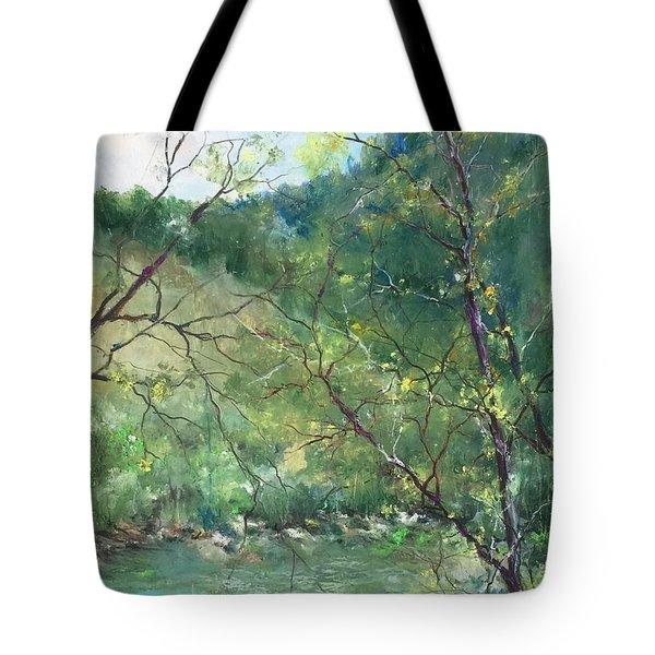 Sabino Canyon Tote Bag