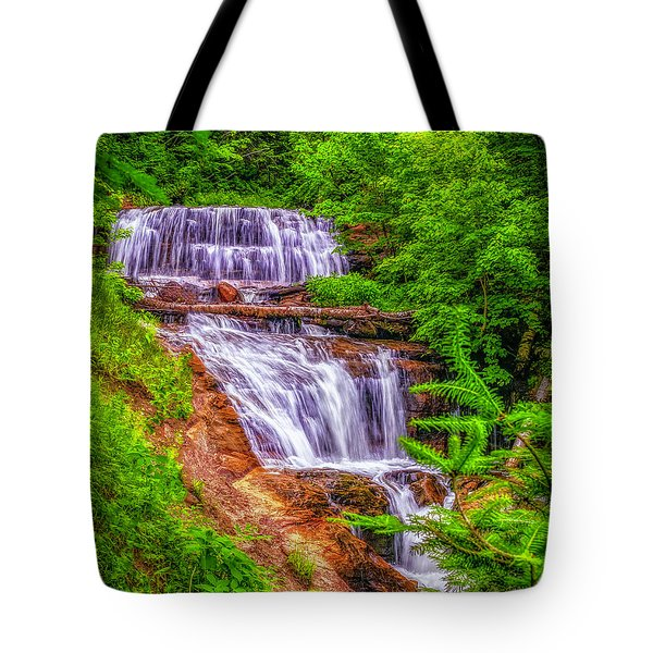 Tote Bag featuring the photograph Sable Falls by Nick Zelinsky