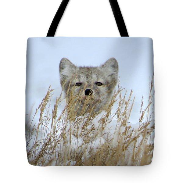 Sachs Harbour Fox Tote Bag
