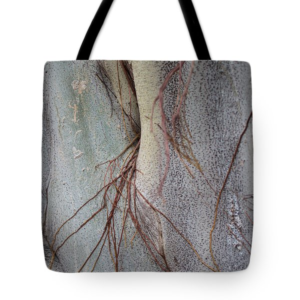 Sacred Bodhi Tree Detail With Red Creeper Vines Tote Bag by Jason Rosette
