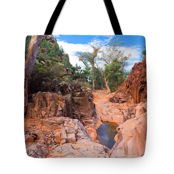 Sacred Canyon Tote Bag