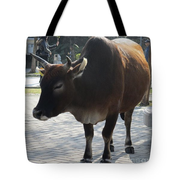 Tote Bag featuring the photograph Sacred Cow 2 by Randall Weidner