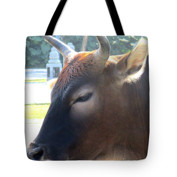 Tote Bag featuring the photograph Sacred Cow 4 by Randall Weidner