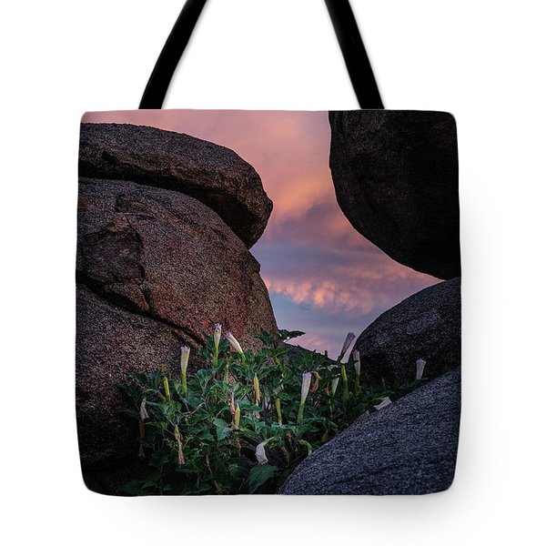 Tote Bag featuring the photograph Sacred Datura Amongst The Boulders by Gaelyn Olmsted