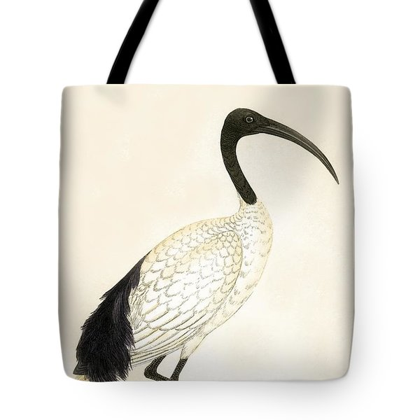 Sacred Ibis Tote Bag by English School