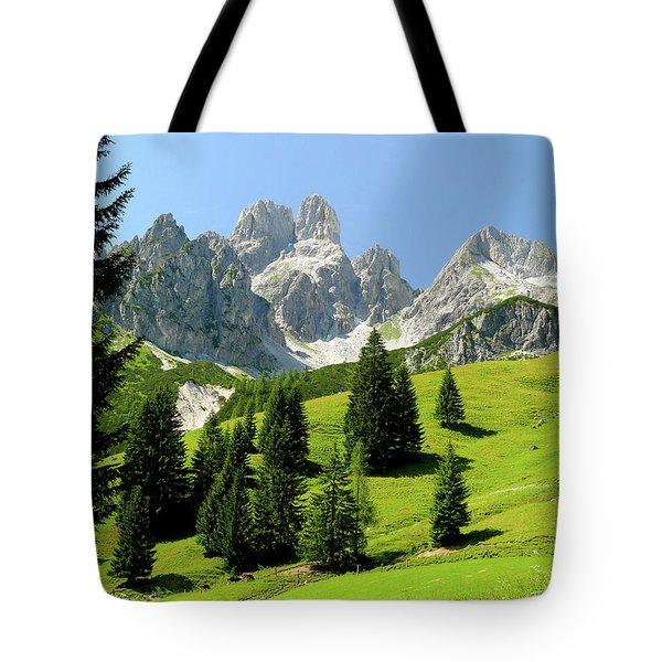 Sacred Land Tote Bag