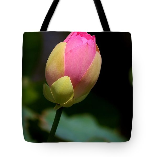 Sacred Lotus Bud 3 Tote Bag