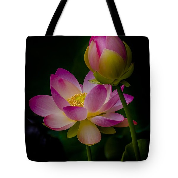 Sacred Water Lily 4 Tote Bag