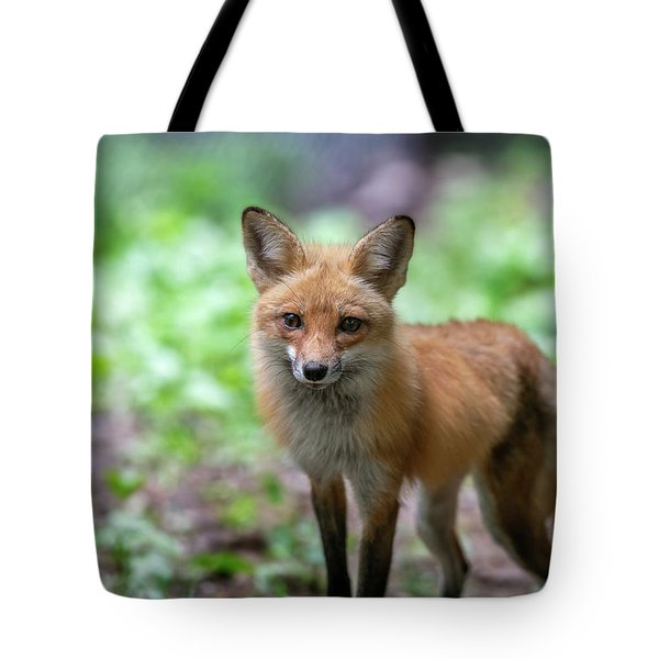 Tote Bag featuring the photograph Sad Eyes by Dan Friend