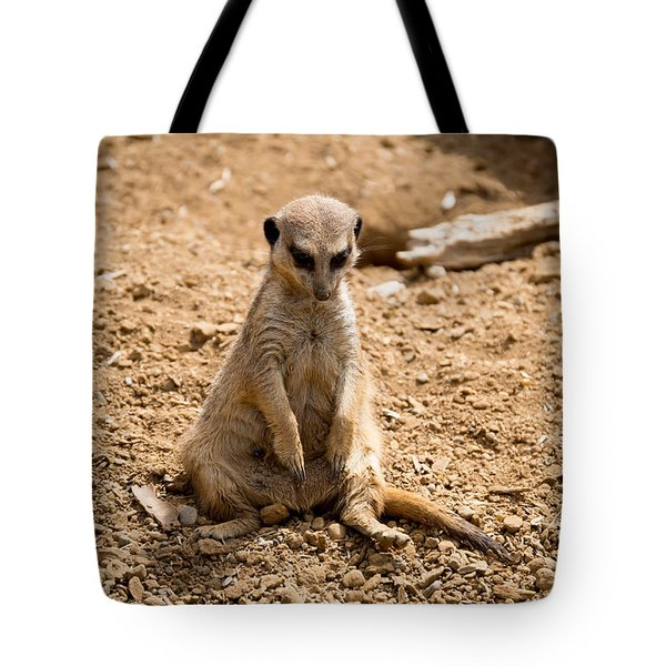 Tote Bag featuring the photograph Sad Meerkat by Scott Lyons