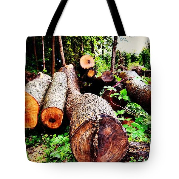 Sad Sight Fallen Forrest Tote Bag