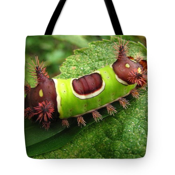 Saddleback Caterpillar Tote Bag