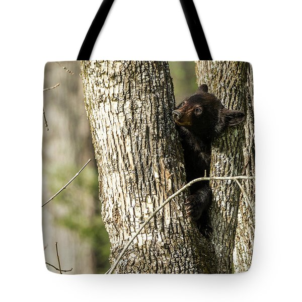 Tote Bag featuring the photograph Safe From Harm by Everet Regal
