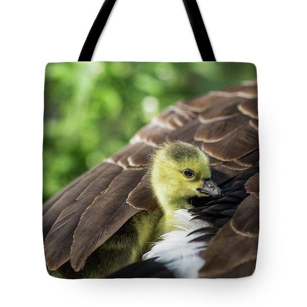 Safe Place Tote Bag