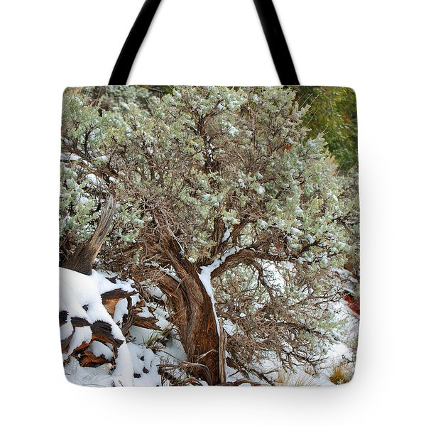 Sage Brush Williams Arizona Tote Bag by Donna Greene