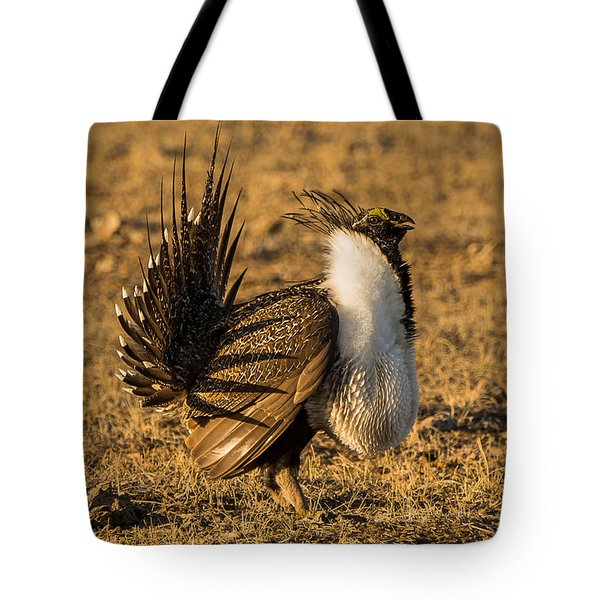 Sage Grouse Mating Display Tote Bag by Yeates Photography