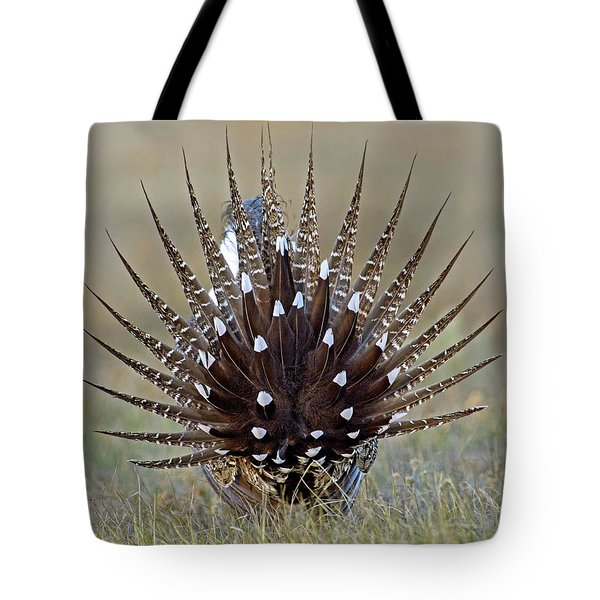 Sage-grouse Tail Fan Tote Bag