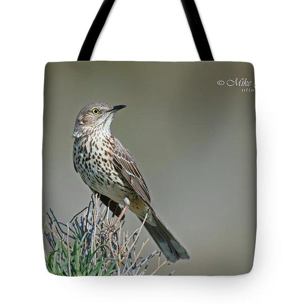 Sage Thrasher Tote Bag