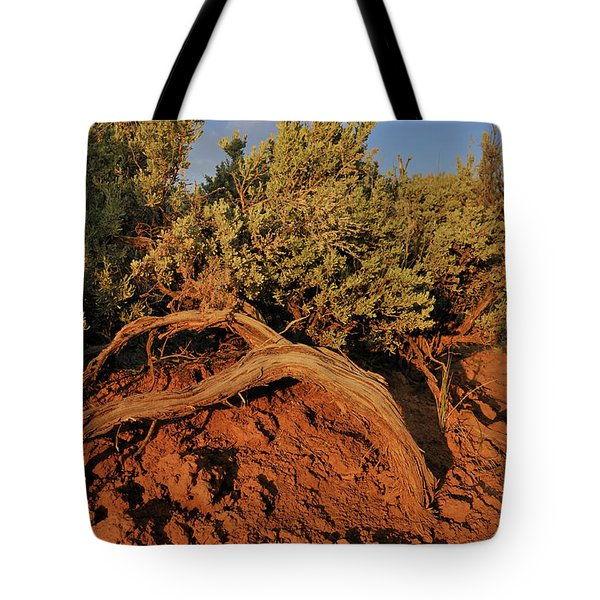 Tote Bag featuring the photograph Sagebrush At Sunset by Ron Cline