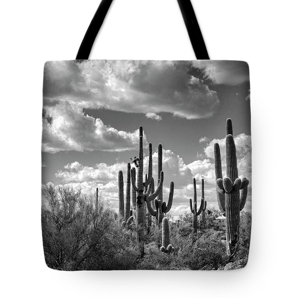 Tote Bag featuring the photograph Saguaro And Blue Skies Ahead In Black And White  by Saija Lehtonen