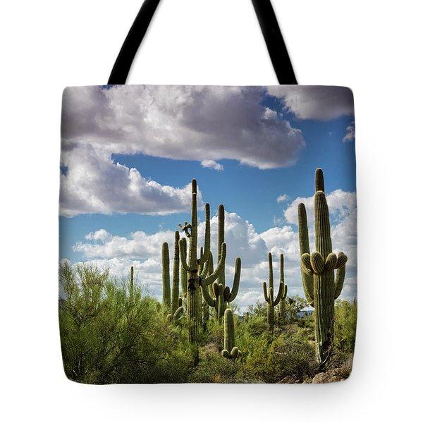 Tote Bag featuring the photograph Saguaro And Blue Skies Ahead  by Saija Lehtonen